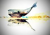 大魚 的祝福:60019411_1001909076680517_164222313695281152_o_調整大小.jpg