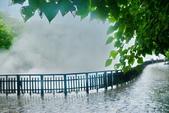 雨中地熱谷:DSC_5659_調整大小.JPG