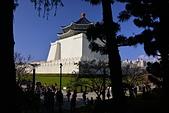 中正記念堂櫻花:DSC_0022_調整大小.JPG