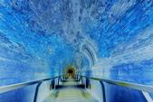 後龍 過港舊隧道:DSC_0344_調整大小.JPG