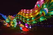 2020閃漾 大都會公園 花燈:DSC_0274_調整大小.JPG