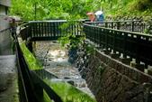雨中地熱谷:DSC_5690_調整大小.JPG