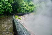 雨中地熱谷:DSC_5643_調整大小.JPG