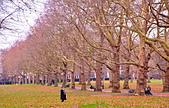 英國 白金漢宮 公園:DSC_0091_調整大小.JPG