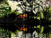 華梵大學 螢火蟲之夜:Firefly_210427_10_調整大小.jpg