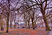 英國 白金漢宮 公園:DSC_0110_調整大小.JPG