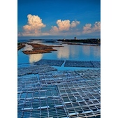 晨光 布袋漁港:相簿封面