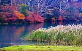 雨中 湯湖:DSC_0497_調整大小.JPG