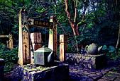 桂花吊橋 螢火蟲之夜:IMG_20210430_174559_調整大小.jpg