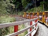 太平山11-5-98:DSC05152.JPG