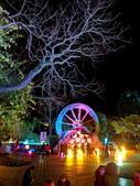 石岡 花漾藝術燈會:IMG_20210212_202844_調整大小.jpg