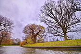 劍橋河畔:DSC_0399_調整大小.JPG