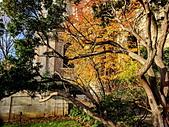 西敏寺大教堂:IMG_20181208_103019_調整大小.jpg