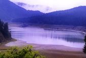 槭紅太平山:DSC_2331_調整大小.JPG