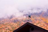 秋天的 日光:DSC_0667_調整大小.JPG
