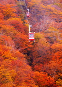 日光 男體山 瞭望台:DSC_0534_調整大小.JPG