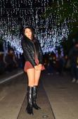 新北聖誕花燈 2017:DSC_0256_調整大小.JPG