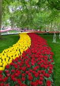 四月 歐洲 :95889_調整大小.jpg