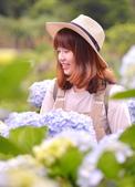 午後陽光 繡球花田:DSC_0728_調整大小.JPG