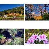 櫻你而在 陽明山公園:https://www.youtube.com/watch?v=YxfnUPqWV0k