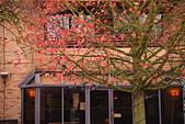 劍橋大學:DSC_0659_調整大小.JPG