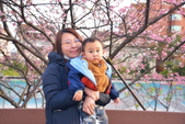 內湖 櫻花 2020:DSC_0773_調整大小.JPG