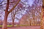 英國 白金漢宮 公園:DSC_0069_調整大小.JPG