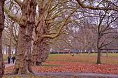 英國 白金漢宮 公園:DSC_0105_調整大小.JPG