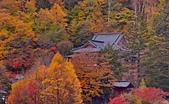 中禪寺湖 楓景:DSC_0345_調整大小.JPG