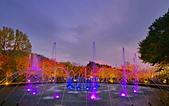 陽明山之夜 2019:DSC_0311_調整大小.JPG