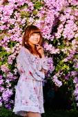 2020泰山 楓樹腳河濱公園 蒜香藤花:DSC_0255_調整大小.JPG