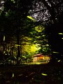 華梵大學 螢火蟲之夜:DSC_0157_調整大小.JPG