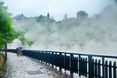 雨中地熱谷:DSC_5636_調整大小.JPG
