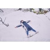 陽明山飄雪 秒變秘境:相簿封面