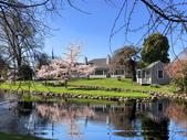 飛去紐西蘭:S__102563986_調整大小.jpg