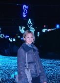 中港大排燈會,藍海地球.:DSC_0128_調整大小.JPG