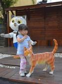 貓教室:DSC_2441_調整大小.JPG