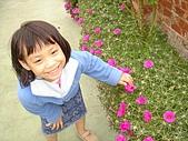 2009-11-21 台南行:DSC05916.JPG