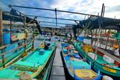安平小漁港:DSC_4630_調整大小.JPG