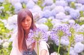 繡球花ˊ習拍:DSC_0211_調整大小.JPG