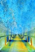 後龍 過港舊隧道:DSC_0373_調整大小.JPG