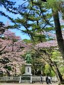 日本櫻花見:07E4AF12-B012-4860-98F5-BC37E0ECC163_調整大小.jpg