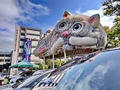 淡水國小的 貓:IMG_20210313_140211_調整大小.jpg