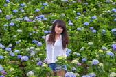繡球花 竹子湖 2017:DSC_3844_調整大小.JPG