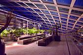 倫敦夜景:DSC_0169_調整大小.JPG