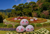 櫻你而在 陽明山公園:DSC_0519_調整大小.JPG