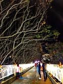 石岡 花漾藝術燈會:IMG_20210212_204437_調整大小.jpg