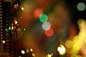 祝大家Merry XMAS & happy new year:IMG_0036.JPG