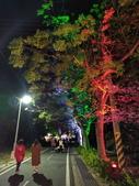 石岡 花漾藝術燈會:IMG_20210212_205938_調整大小.jpg