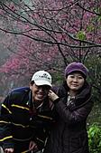 陽明山花季100:_DSC0223.JPG